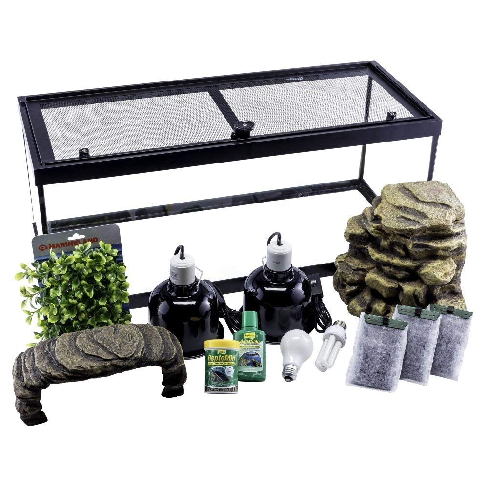 Review Best 20-Gallon Fish Tank Kits