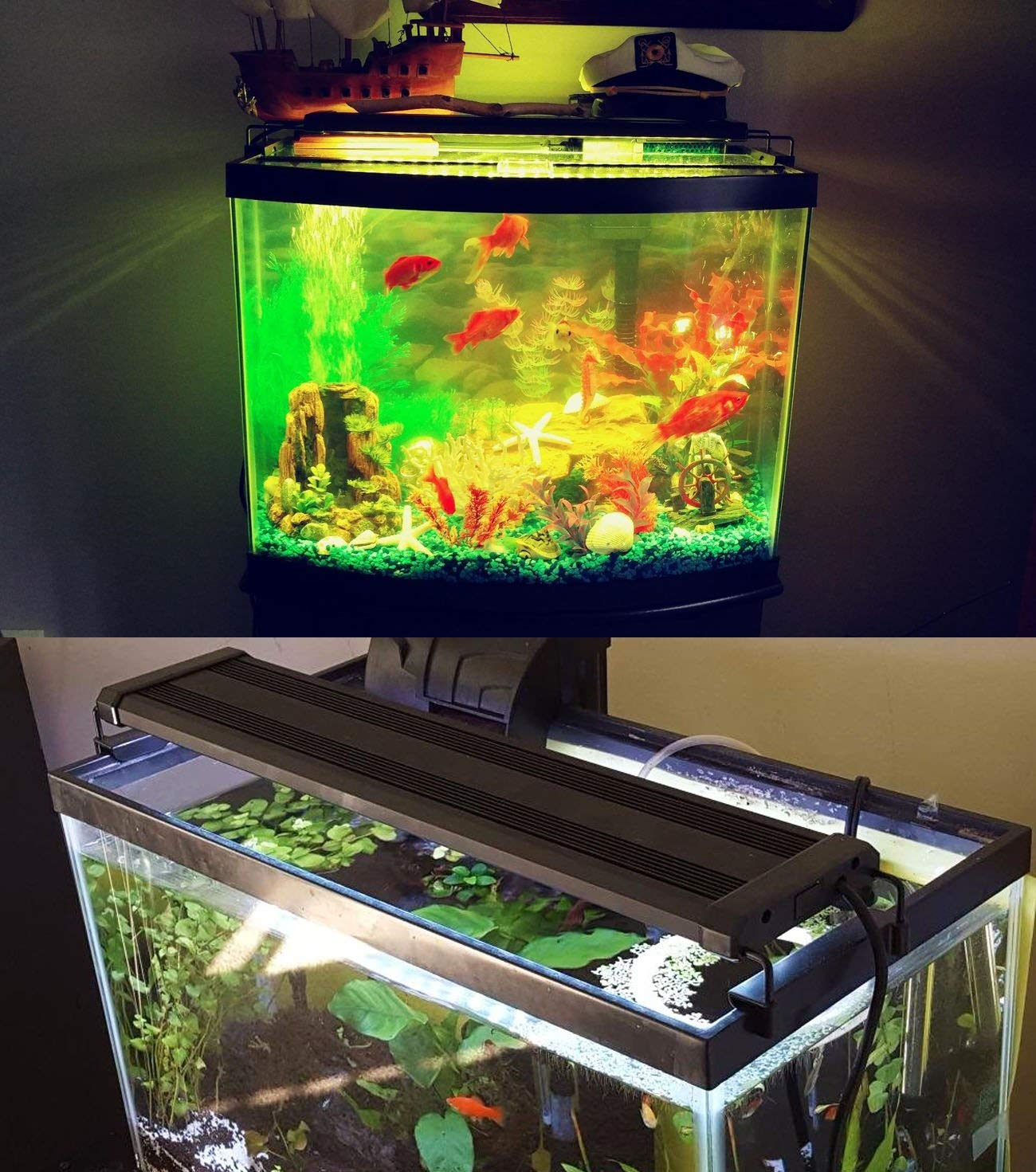Reviews Best LED Lights for Planted Tank