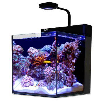Top 8 Best Nano Reef Tanks In 2019