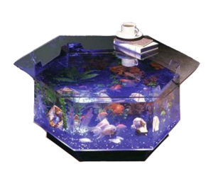4 The Best Fish Tank Coffee Tables