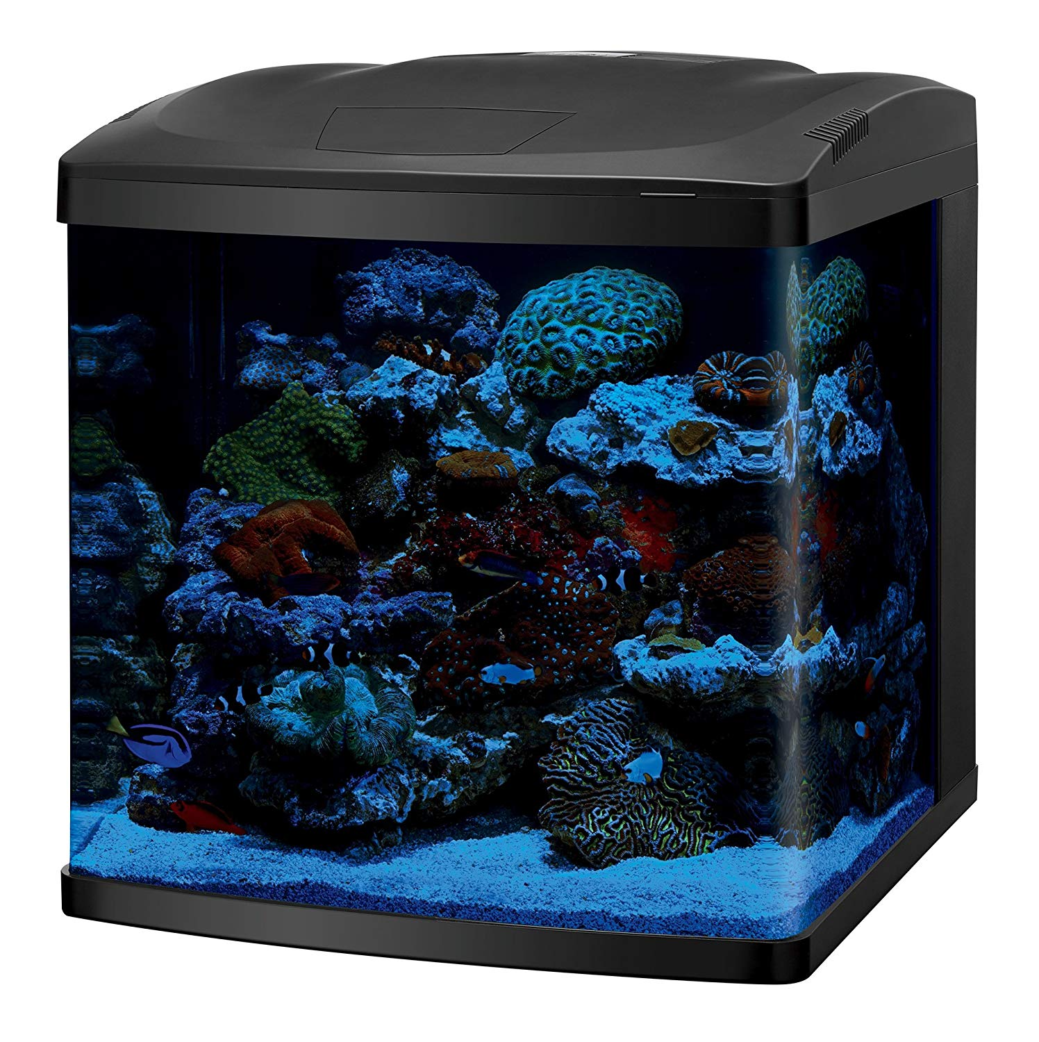 5 Great 25-30 Gallon Aquarium Kits