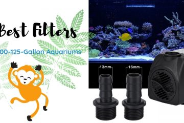 6 Best Filters For 100-125-Gallon Aquariums