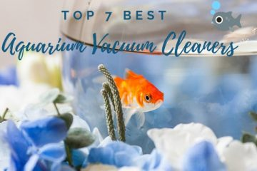 Best Aquarium Vacuum Cleaners For Your Tank Review