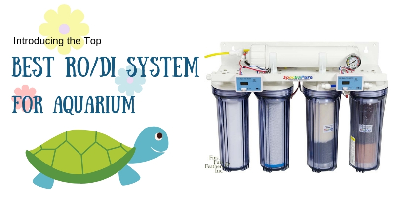 Best RO/DI System for Aquarium Reviews