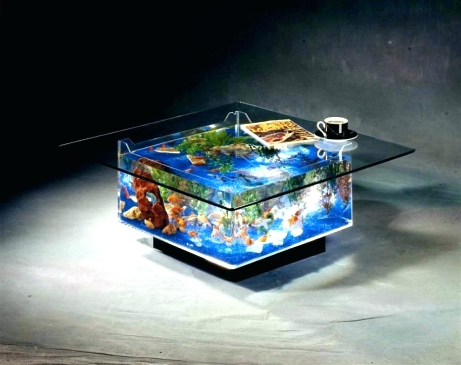 25 Gallon Aqua Coffee Table.4 Best Fish Tank Coffee Tables You Will Love 2019 Review