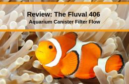 Review The Fluval 406