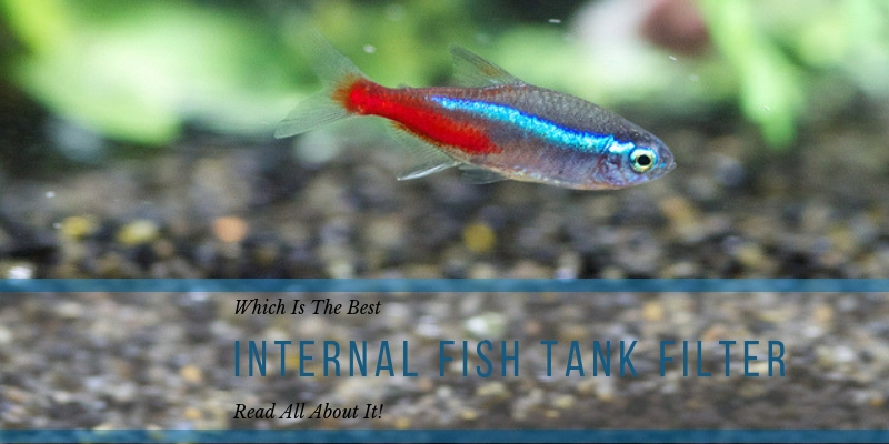 Internal Fish Tank Filter Review