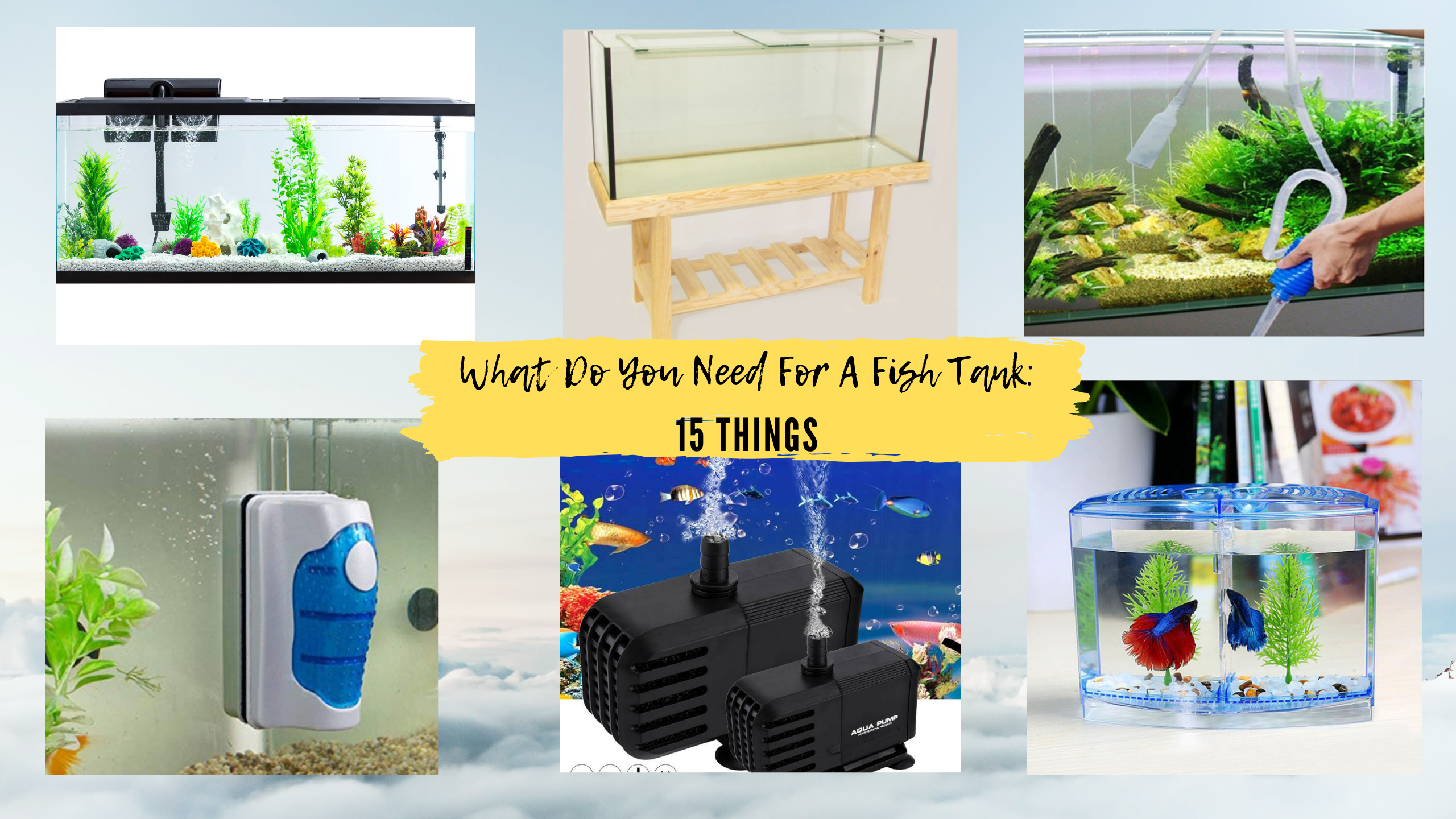 What Do You Need For A Fish Tank